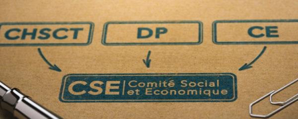 comité social et économique